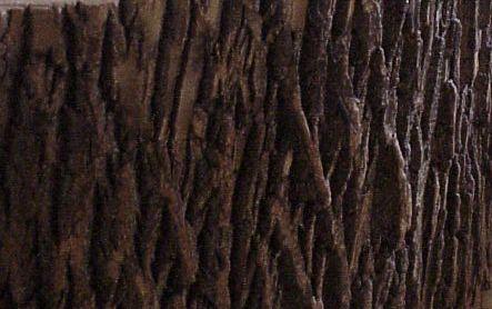 Copy (2) of log3F