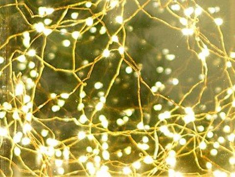 stargazer lights_teraine
