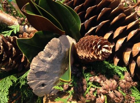 cones-greenscrpt